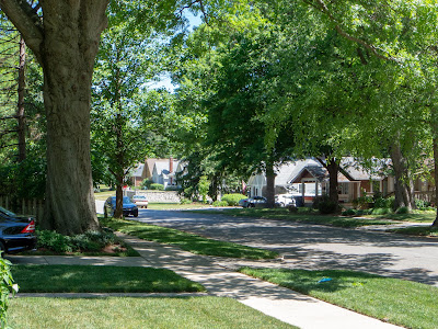 Quiet, shady tree-lined streets...