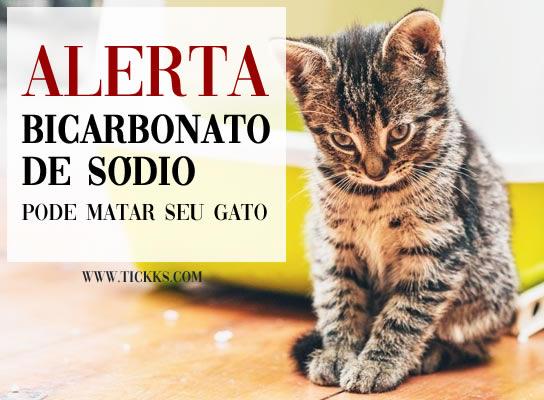 Bicarbonato de sódio pode matar seu gato