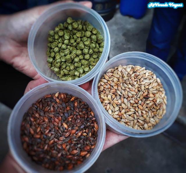 cerveja: malte, lúpulo e leveduras