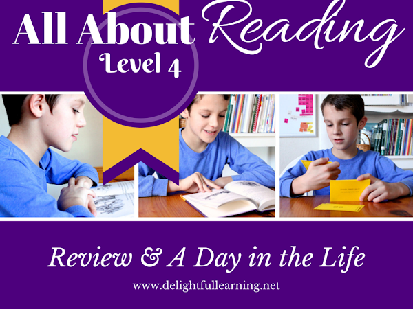 A Review of All About Reading Level 4