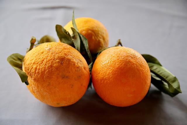 Giant oranges,, Cyprus pic: Kerstin Rodgers/msmarmitelover.com