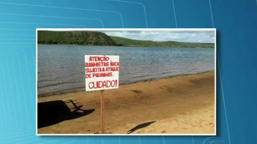 Pão de Açúcar: Placas advertem para risco de ataques de piranhas em trecho do rio São Francisco