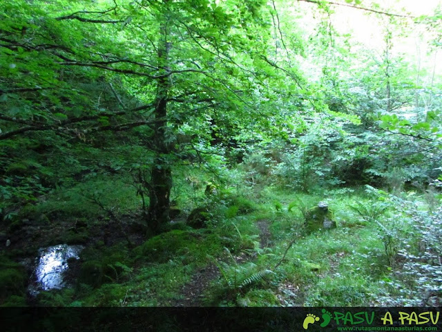 Sendero cruzando arroyo del Valle de la Foix