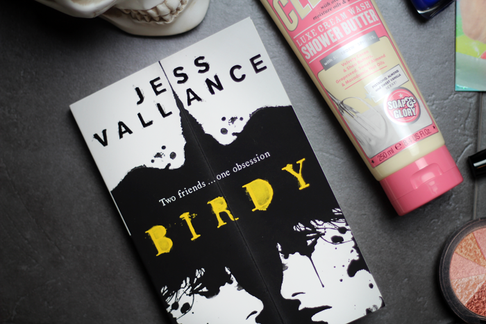 Birdy by Jess Vallance published by Hot Key Books