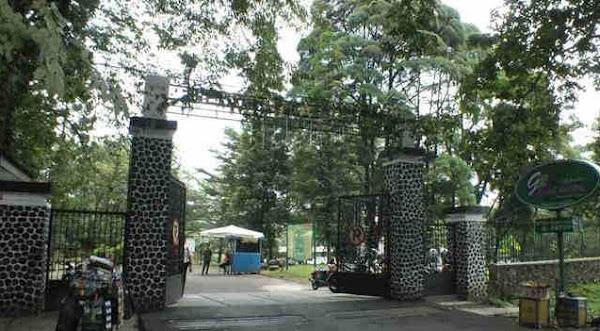 4 Pintu Masuk dan Cara Menuju Kebun Raya Bogor