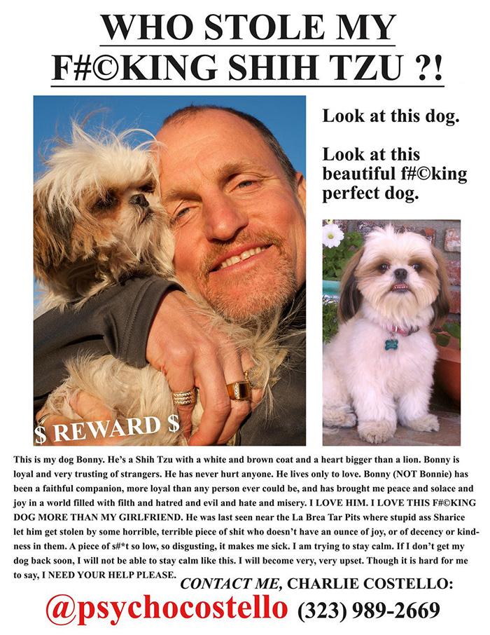 Объявление Фрэнка Костелло о пропаже любимой собачки Бонни