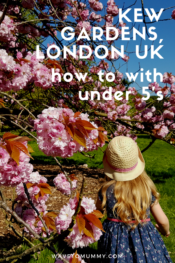 Visiting Kew Gardens, London, UK with young children. What to do and how to make the most of your trip to Kew Gardens, London, if you have small children with you. Top tips and ideas for parents with under 5 year olds!