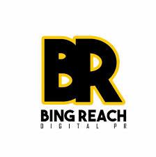 Bingreach Digital Recruitment 2018