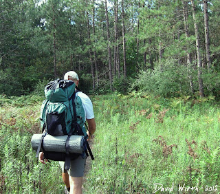 2 day hike, camping, manistee, michigan hiking trail