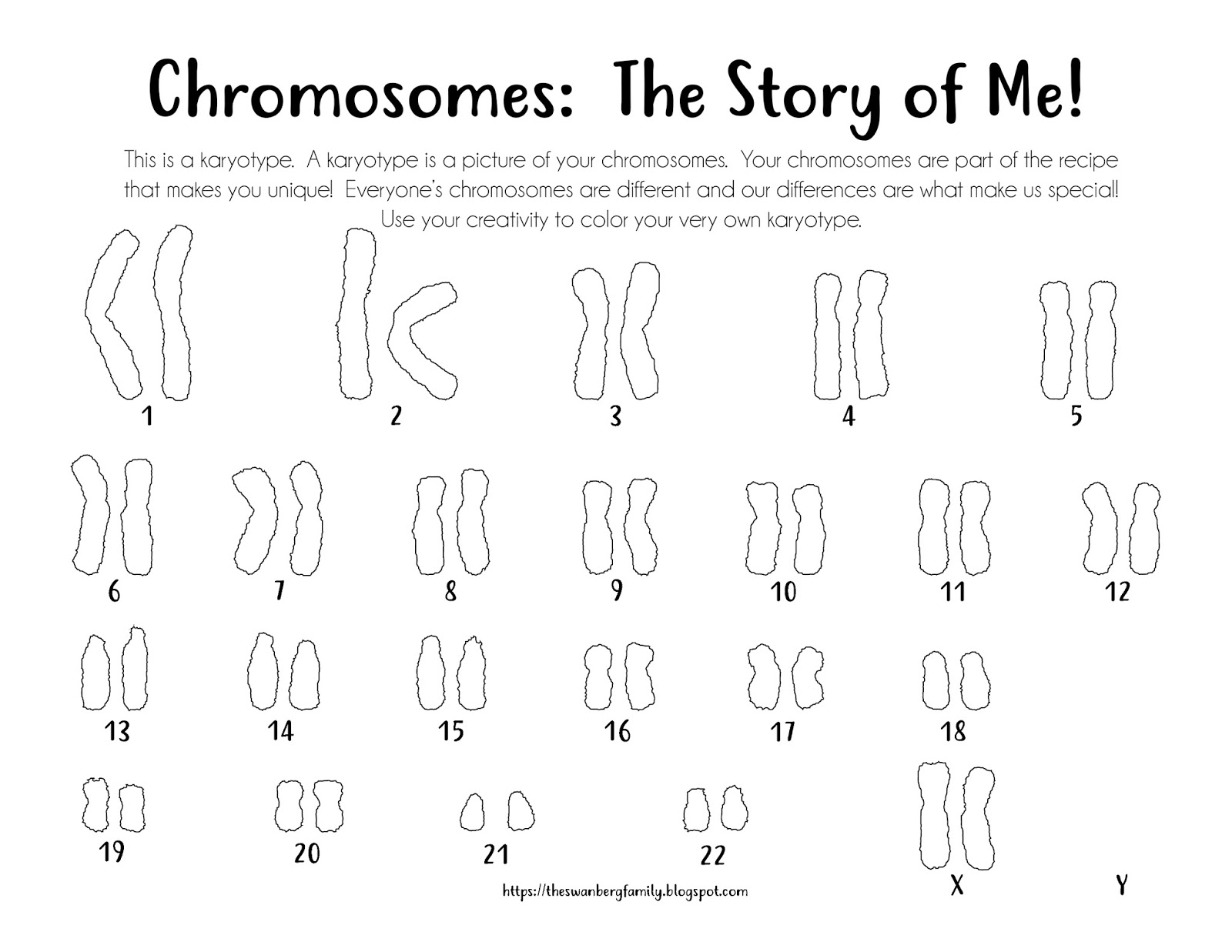 Karyotype Coloring Sheets