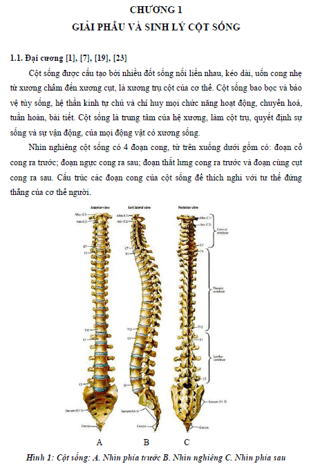 Chăm sóc và phục hồi chức năng cho bệnh nhân đau cột sống thắt lưng do thoát vị đĩa điệm