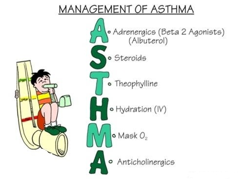What Is Asthma? What Are Asthma Symptoms, Causes, Treatments And