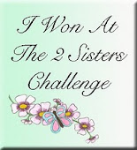 The 2 Sisters Challenge Blog