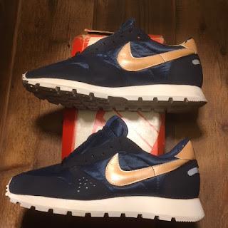 Nike Lander