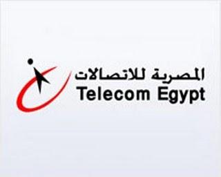 فاتورة التليفون الارضي المنزلي للمصرية للاتصالات 140 Online