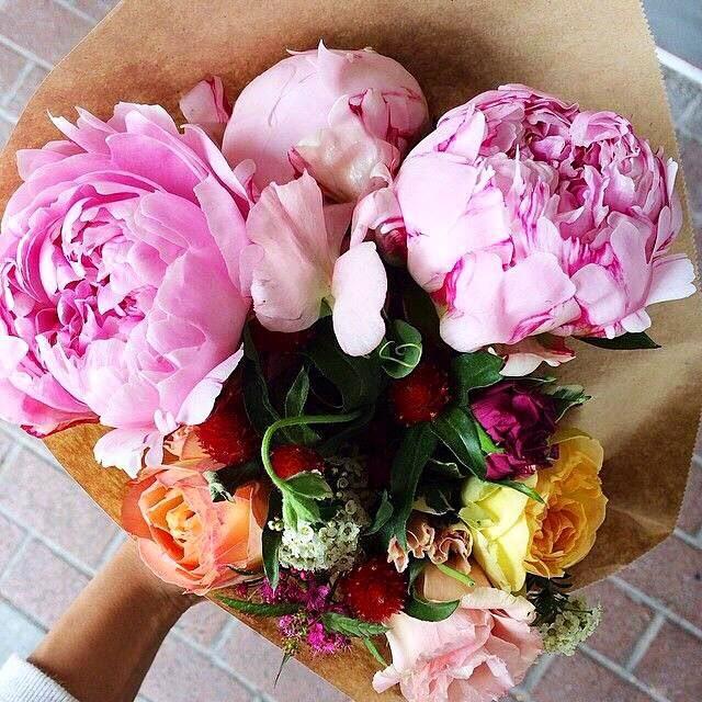 pink peonies roses