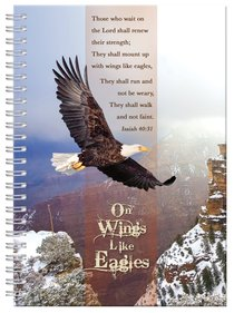 Plucking the Eagles Wings Book