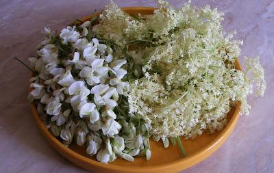 Fiori di robinia e fiori di sambuco.