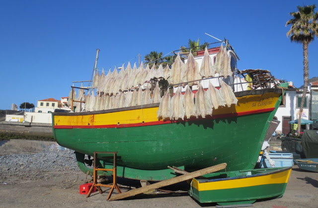 Fischerboot mit Bacalhau in Câmara de Lobos, Madeira