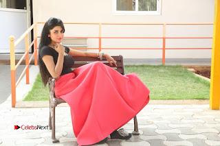 Telugu Actress Harini Stills at Dhyavudaa Movie Teaser Launch  0420.JPG