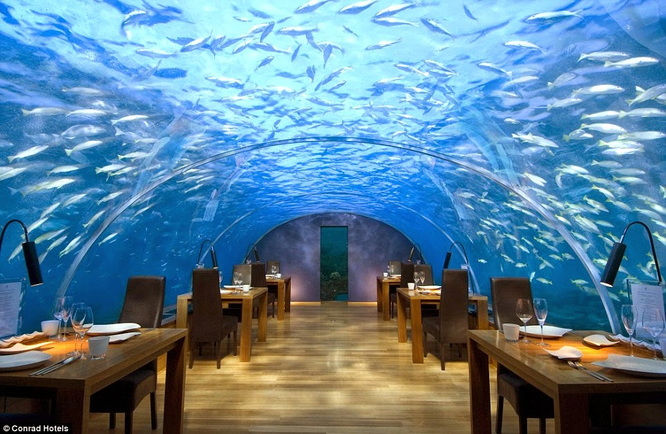 "It was rated ""the most beautiful restaurant in the world"" by the New York Daily News in 2014. - The ""Most Beautiful Restaurant In The World"" Is Downright Mind-Blowing."