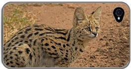 i-phone case with image of serval