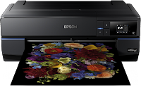 Epson SureColor P800 Driver (Windows & Mac OS X 10. Series)