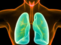 Best Treatment For Lung Cancer Stage 4