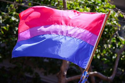 Photo of a bi flag