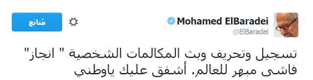 البرادعي عن تسريبات أحمد موسى: أشفق عليك يا وطني