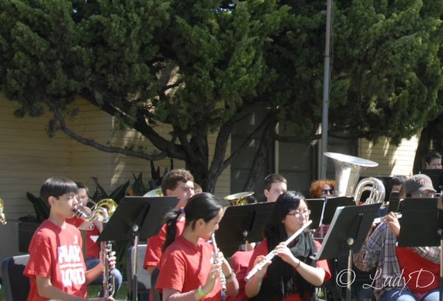 Fallbrook high school band: LadyD Books