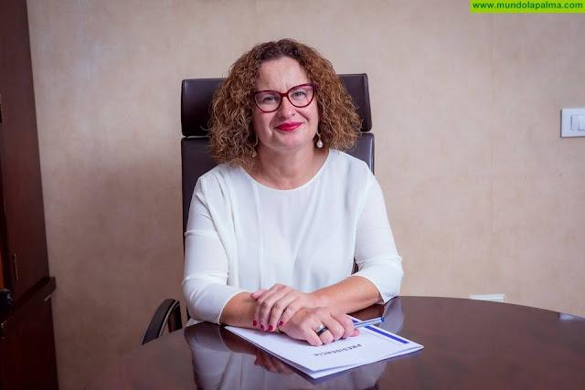 La Consejería de Acción Social del Cabildo y la Diputación del Común abordan la intervención con menores y familias