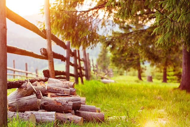 закат, лес, горы, блик, Карпаты, Украина, Буковель, путешествия, TorriPhotoприрода, nature, forest, light,