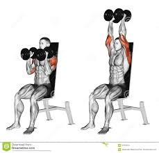 one arm dumbbell triceps extensions (exterior head)