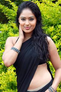 Telugu actress Nikesha Patel in saree navel image