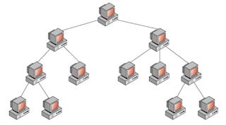 Topologi Hierarchy