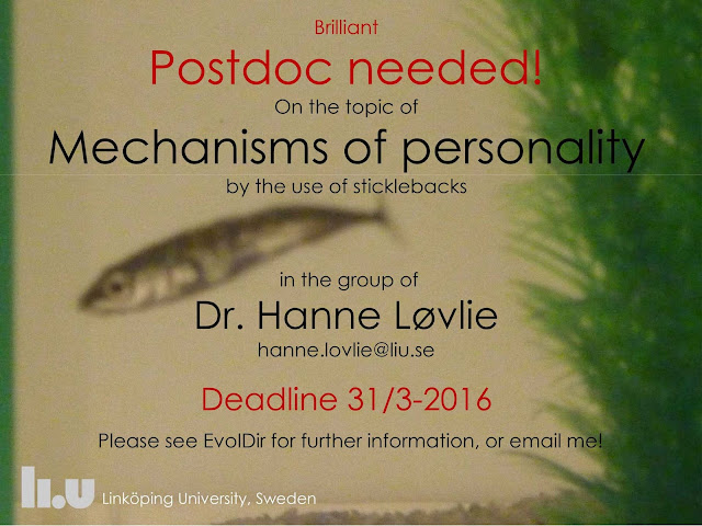 postdoc job offer in Sweden