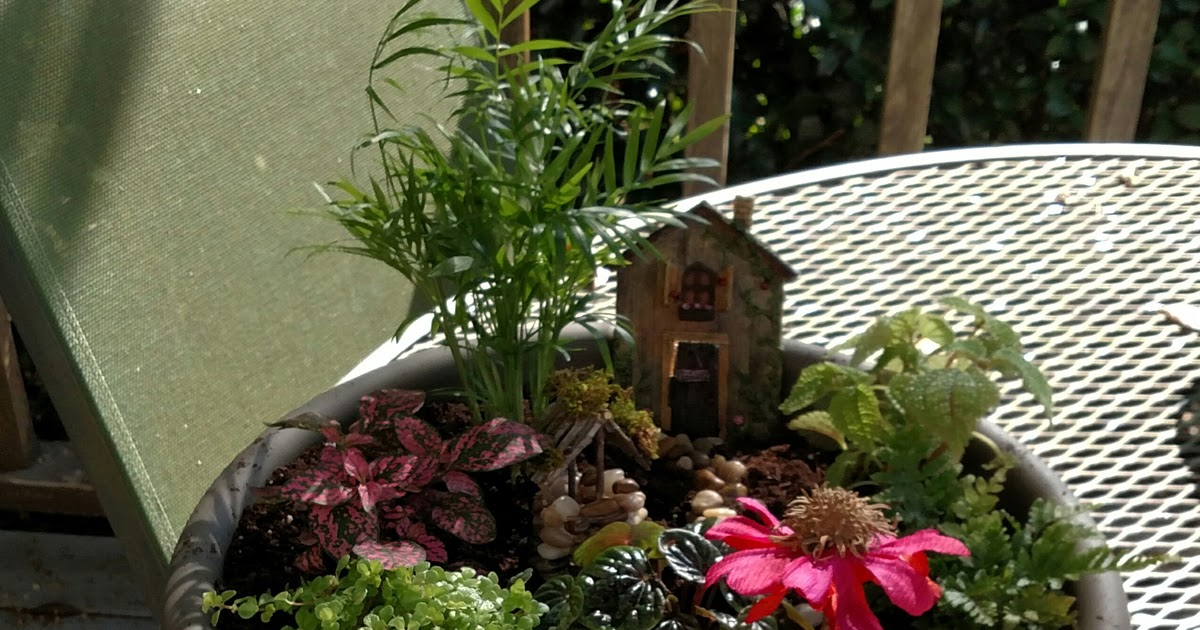 Gnome Garden: Magnolia's Place: Fairy Garden