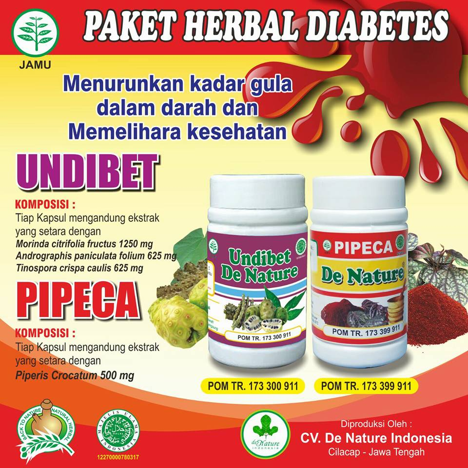 Obat Diabetes Melitus de Nature