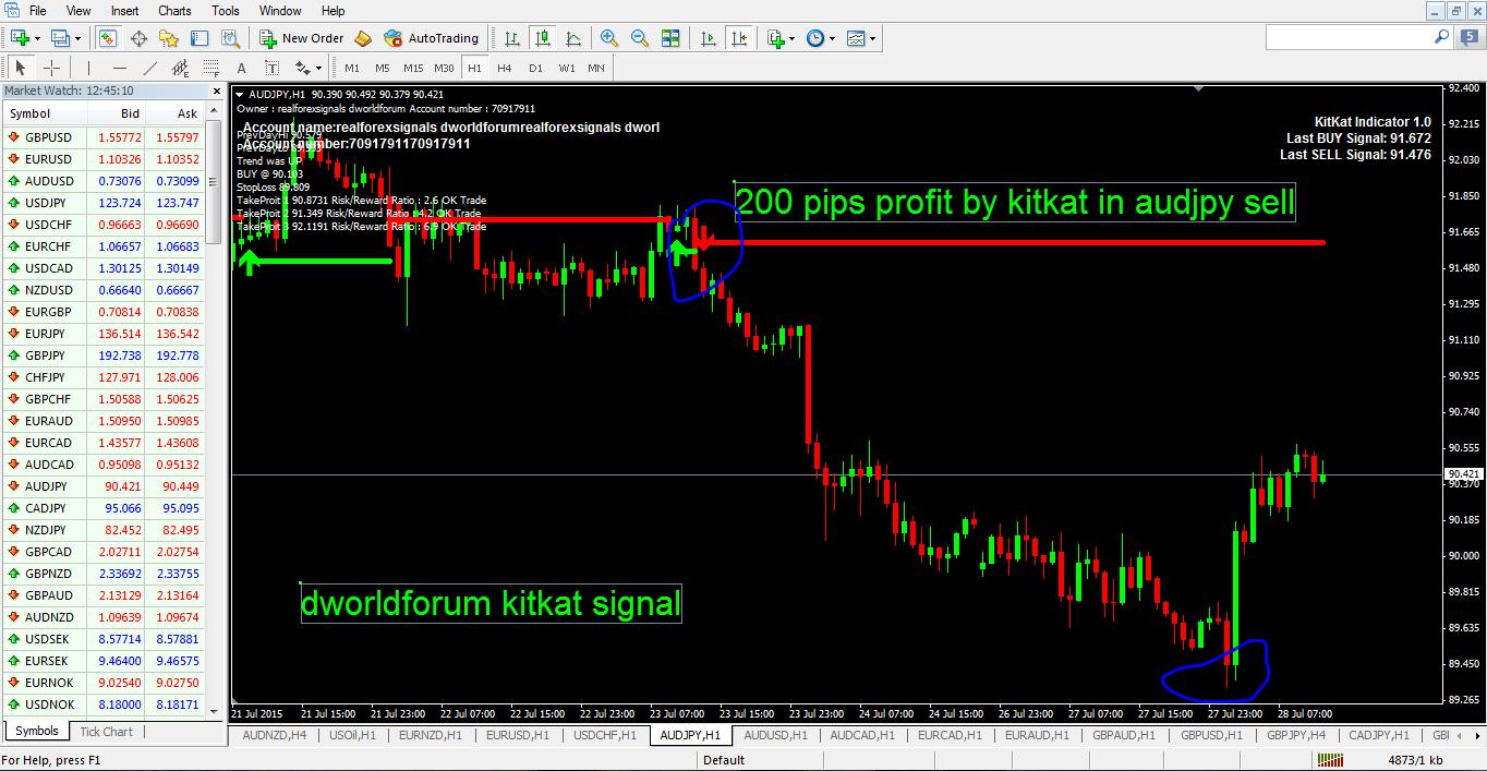 best forex indicator | best binary option indicator | best