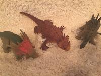 Dinosaurs Sensory Toy