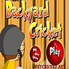 Online Backyard cricket game