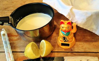 faire son fromage, laiterie de paris, fabrication mascarpone, faire son mascarpone, blog fromage, blog fromage maison, faire du fromage, faire du mascarpone, recette mascarpone maison