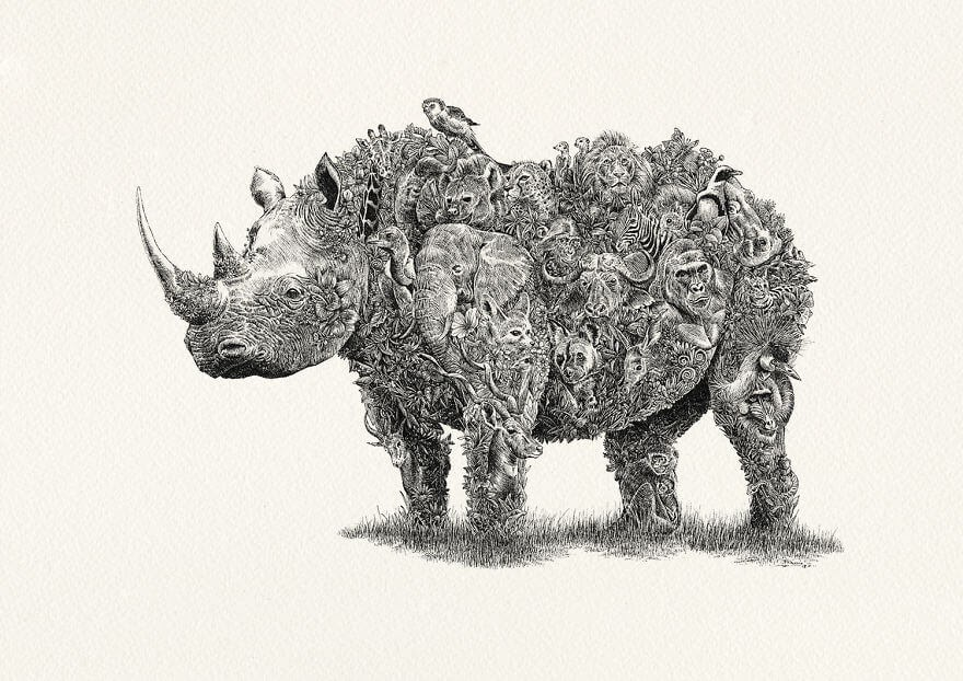 06-Rhino-Africa-Nathan-Ferlazzo-www-designstack-co
