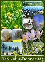 http://kreativ-im-rentnerdasein.blogspot.de/