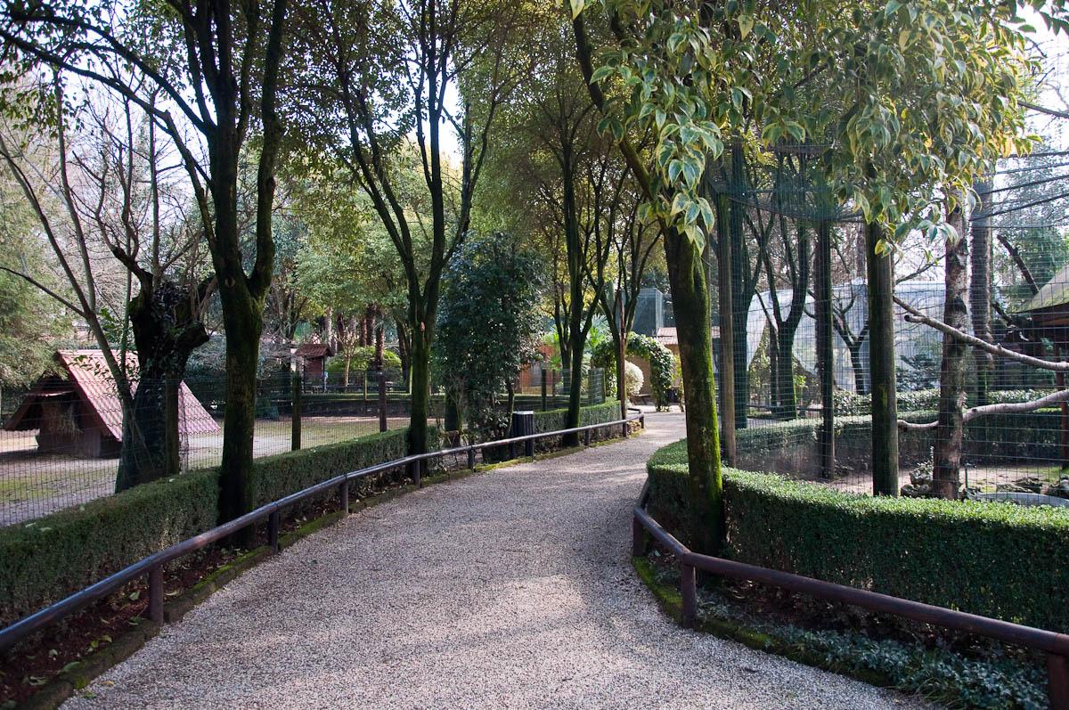 Inside Parco Faunistico Cappeller, Nove, Veneto, Italy