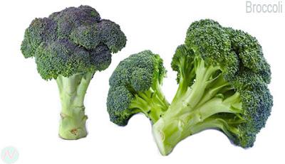 শতকলি, ব্রকলি, Broccoli; بروكلي; Brocoli; Brokkoli; ब्रोक्कोली; ブロッコリー; брокколи; Brócoli; brokoli; بروکولی