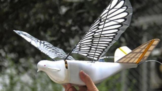 China lanza drones en forma de palomas para espiar a sus ciudadanos