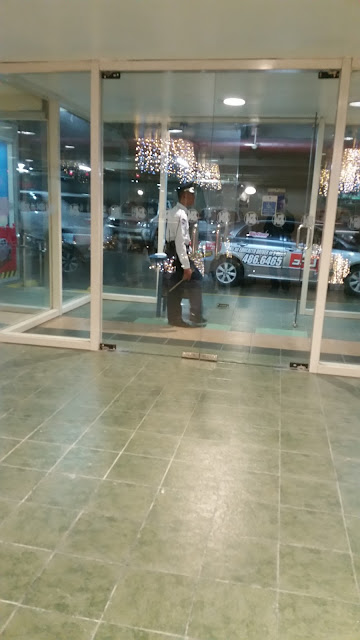 A standing security guard at the entrance of an establishment