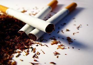 Processo de fabricação do cigarro